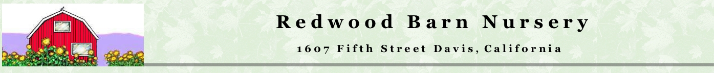 redwood barn logo