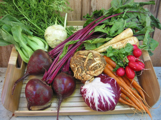 A Harvest Of Winter Vegetables! All Can Be Planted In Fall For Cool Season  Harvest.